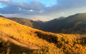 LAND CONSERVATION IN THE VAIL VALLEY